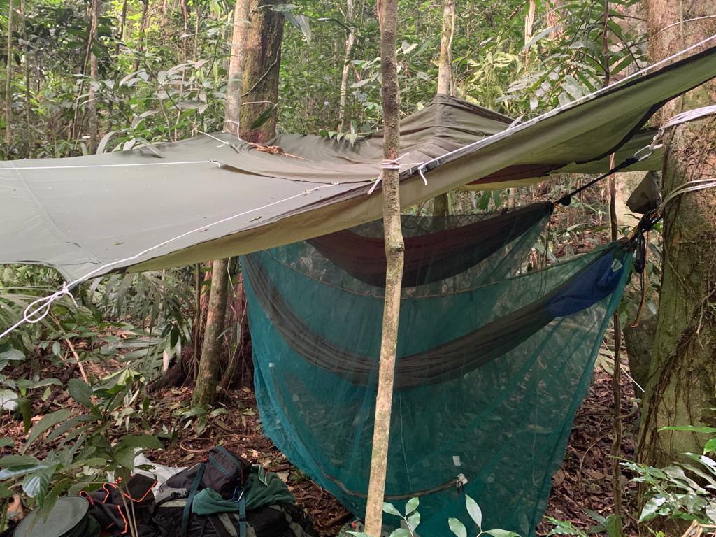 Foto de acampamento selvagem com redes.